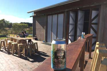 Young-Henrys-Brewery-Metricup-dairy-shed-conversion-4